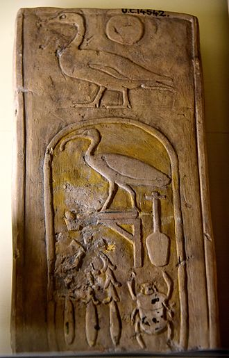 Thutmose III - A fragment of a wall block. The hieroglyphs Son of Ra were inscribed over the cartouche of the birth-name of Thutmos III. 18th Dynasty. From Egypt. The Petrie Museum of Egyptian Archaeology, London