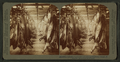 A half-mile of pork, Armour's great packing house, Chicago, Ill, from Robert N. Dennis collection of stereoscopic views.png