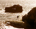 A surfer and the seals.jpg