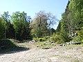 Access to Slidderybrae Wood - geograph.org.uk - 418763.jpg
