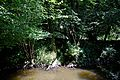 Across the Arun at the north of Nuthurst, West Sussex, England.jpg
