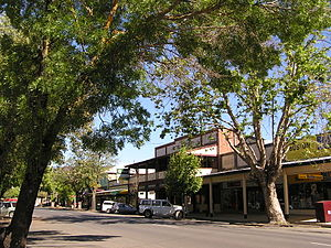 Adelong, New South Wales - Main street