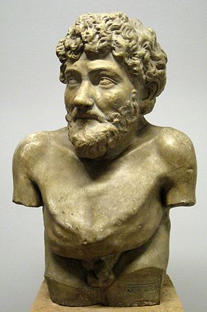 Aesop - Hellenistic statue claimed to depict Aesop, Art Collection of Villa Albani, Rome