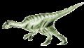 Agilisaurus2.png