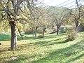 Akıntı, 01500 Çamdere-Kozan-Adana, Turkey - panoramio (1).jpg