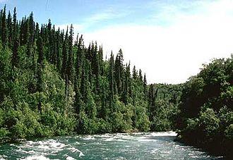 Alagnak River - Rapids on the Alagnak