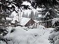 Alpenpflanzengarten im Winter 03.jpg