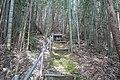 Amenoshirahano shrine - ibaraki - small bamboo grove shrine - 2019-4-29.jpg