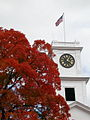 Amherst College Johnson Chapel fall.jpg