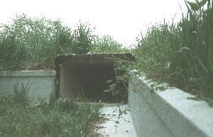 Amphibientunnel1