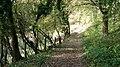 An Autumnal Stroll - geograph.org.uk - 336426.jpg
