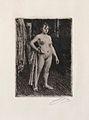 Anders Zorn - Venus de la Vilette (etching) 1893.jpg