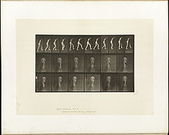 Animal locomotion. Plate 79 (Boston Public Library).jpg
