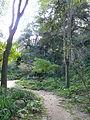 Antic jardí botànic P1250819.jpg