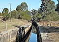 Appin Canal NSW.jpg