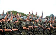 Resultado de imagem para brazilian army
