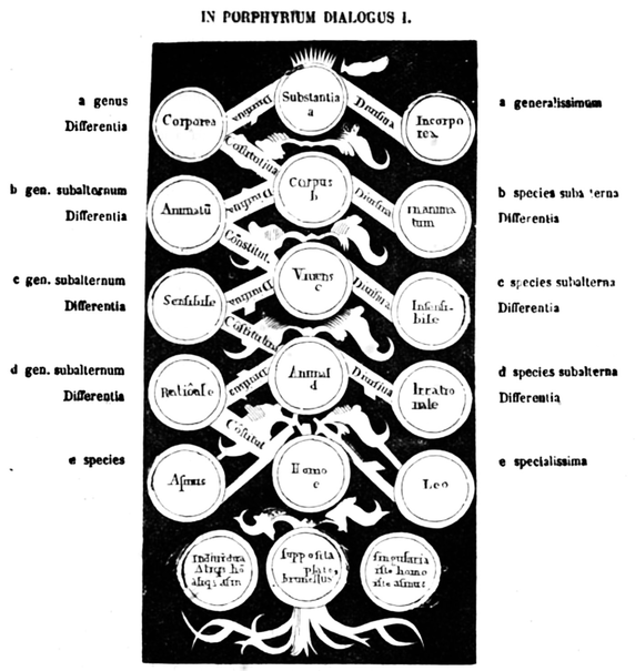 arbre de porphyre