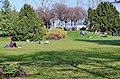Arboretum Zürich 2014-03-10 14-56-13.JPG