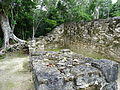Archaeological Site - Coba - Quintana Roo - Mexico - 04 (15753711802).jpg