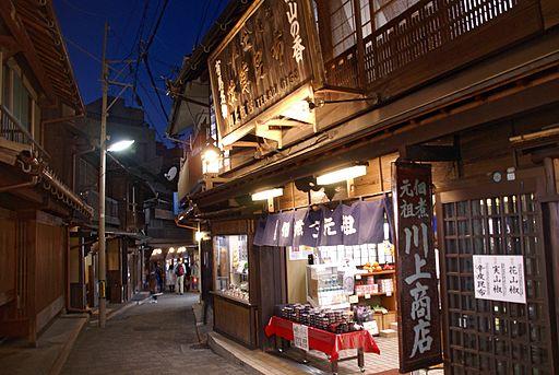 Arima Onsen Yumotozaka01s3200