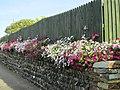 Around Tintagel, Cornwall (461184) (9458694322).jpg