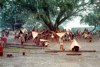 Kemak people - Traditional umbrellas (saluric in Tetum language) used in Atsabe, circa 1968-1970.