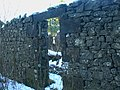Auchenskew Cottage in ruins - geograph.org.uk - 1074091.jpg