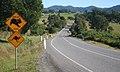 Aussies crossing - panoramio.jpg
