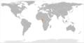Azerbaijan Cameroon Locator.png