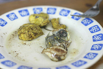The Amazing Race Asia 2 - In Manila, teams had to eat 8 pieces of balut in order to get their next clue.