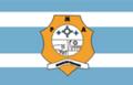 Bandeira Ananindeua.png