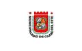 Bandera de Ciudad del Este (Paraguay).png