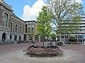 Bank rond Willem-Alexanderlinde.JPG