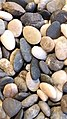 Beach Pebbles Stone Lagoon.jpg