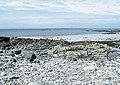 Beach near Cnoca Breac - geograph.org.uk - 1377230.jpg