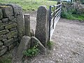 Beeley Stile brings tears to the eyes - geograph.org.uk - 541042.jpg