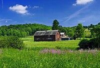 Benton Township Pastoral.jpg