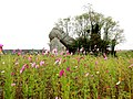 Big Rocks and Cosmos in a Farmer's Field - panoramio.jpg