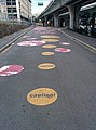 Bike traffic signs on pavement in Brisbane, Australia.jpg