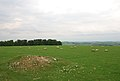 Bilbury Rings - geograph.org.uk - 445835.jpg