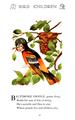 Bird Children-0033-19.png