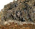 Bismuth-Skutterudite-sea09e.jpg