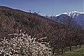 Blick zum Canigou (PME0917).jpg