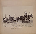 Blood Indian ponies and travois (HS85-10-22807).jpg