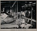 Boer War; wounded soldiers lying inside a hospital train. Ha Wellcome V0015602.jpg