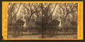 Bonaventure Cemetery, from Robert N. Dennis collection of stereoscopic views 2.png