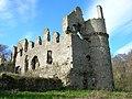 Boyne Castle - geograph.org.uk - 1275729.jpg
