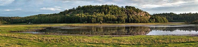 Brattåsberget cliff overlooking the mudflats in the inner part of Hanneviken, a part of Trommekilen, with migratory birds in Norrkila, Lysekil Municipality, Sweden.