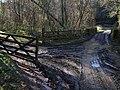 Bridge over the Venn - geograph.org.uk - 621142.jpg