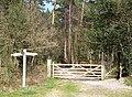 Bridleway Junction at Sandy Down - geograph.org.uk - 395731.jpg
